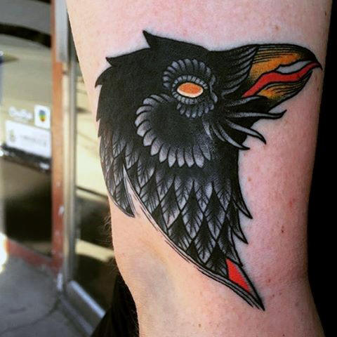 Guys Arms Innovative Yellow Red Beaked Raven Tattoo