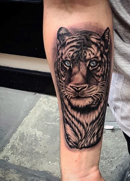 男's Roaring Tiger Tattoo On Forearm