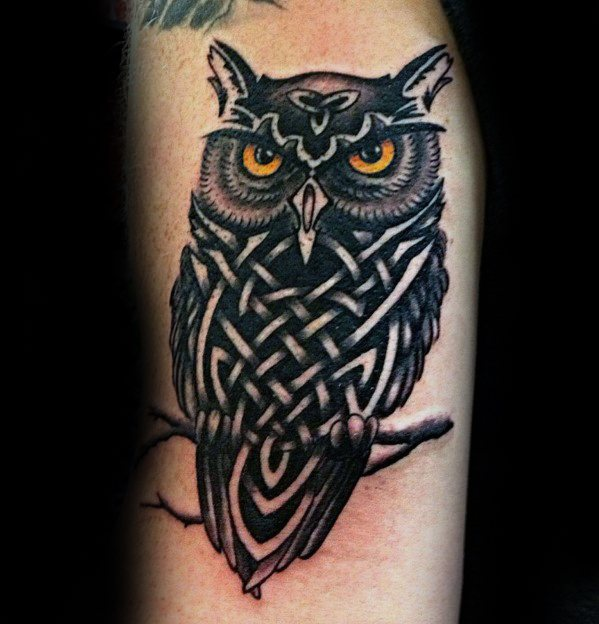 Celtic Owl Tattoos For Gentlemen On Arm
