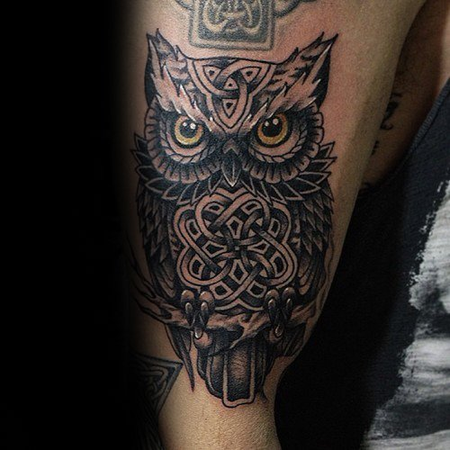 Guy With Arm Celtic Owl Tattoo Design
