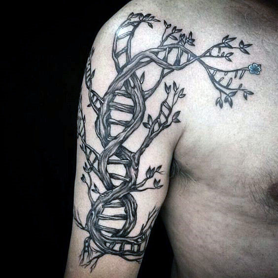 Ramię Dna Doule Helix Stand Mens Tattoo Design w formie drzewa