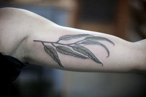 Bicep Olive Branch Male Tattoo Designs