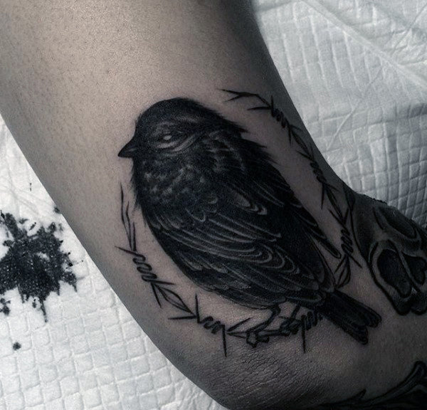 Grå Sparrow Tattoo Med Detailed Feather Work Mens Arms