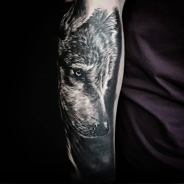 Realistyczne 3d Dire Wolf Forearm Incredible Game Of Thrones Tattoos For Men