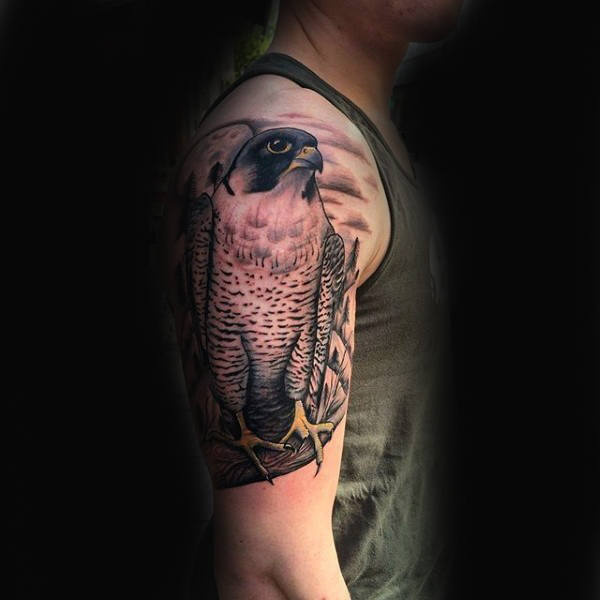 Falcon Tattoo On Mans Upper Arm