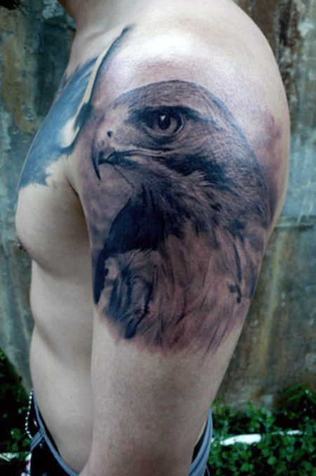 Mens Shaded Falcon Upper Arm Design Tattoo Idee maschile