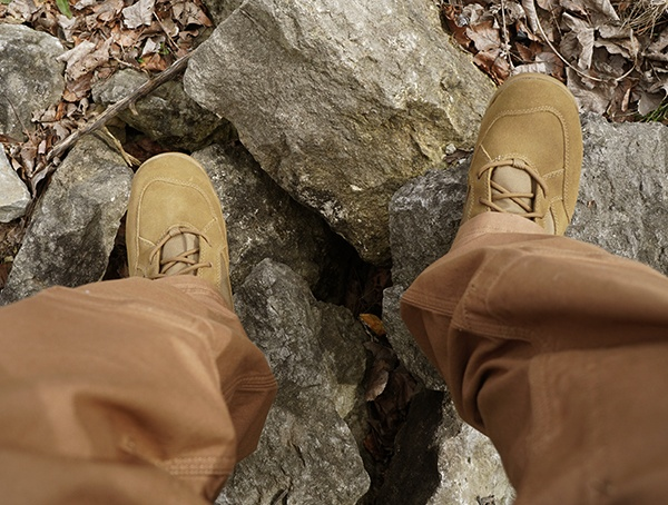 Coyote Danner Tanicus Boots Review Outdoors